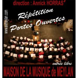 Maison de la musique de Meylan 2011