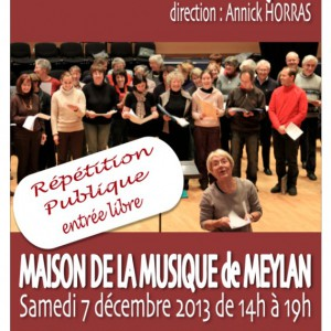 Maison de la musique de Meylan 2013